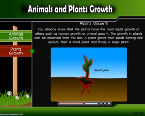 ANIMALS AND PLANTS GROWTH